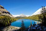 Myosotis Lake au dessus de Skoki lodge.