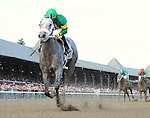 Stonetastic (no. 2), ridden by Paco Lopez and trained by Kelly Breen, wins the 67th running of the grade 2 Prioress Stakes for three year old fillies on August 30, 2014 at Saratoga Race Course in Saratoga Springs, New York.  (Bob Mayberger/Eclipse Sportswire)