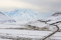 Fresh snow on the tundra along the Denali Park Road, Denali National Park, Interior, Alaska