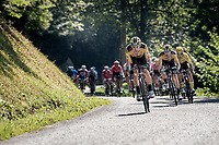 Wout van Aert (BEL/Jumbo - Visma) piloting hi steam & yellow jersey / GC leader Primoz Roglic (SVK/Jumbo-Visma) coming down the Selle de Fromentel<br /> <br /> Stage 15 Lyon to Grand Colombier (175km)<br /> <br /> 107th Tour de France 2020 (2.UWT)<br /> (the 'postponed edition' held in september)<br /> <br /> ©kramon
