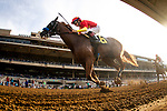 DEL MAR, CA: August 25: #6 Improbable and jockey Drayden VanDyke win the Shared Belief Stakes at Del Mar Thoroughbred Club on August 25, 2019 in Del Mar, California (Photo by Chris Crestik/Eclipse Sportswire)