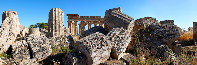 Fallen column drums of Greek Dorik Temple ruins  Selinunte, Sicily photography, pictures, photos, images & fotos. 59 Greek Dorik Temple columns of the ruins of the Temple of Hera, Temple E, Selinunte, Sicily