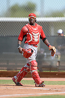 Cincinnati Reds catcher Shedric Long (30) during an Instructional League game against the Milwaukee Brewers on October 6, 2014 at Maryvale Baseball Park Training Complex in Phoenix, Arizona.  (Mike Janes/Four Seam Images)