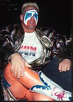 Sting 1991                                                       Photo By John Barrett/PHOTOlink