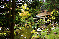 Japanese Tea Garden in Golden Gate Park, San Francisco, California. Tea House and pond.