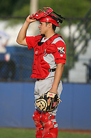 June 27th 2008:  Catcher Travis d'Arnaud (15) of the Williamsport Crosscutters, Class-A affiliate of the Pittsburgh Pirates, during a game at Russell Diethrick Park in Jamestown, NY.  Photo by:  Mike Janes/Four Seam Images