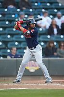 Tyler Hill (24) of the Salem Red Sox at bat against the Winston-Salem Dash at BB&T Ballpark on April 21, 2018 in Winston-Salem, North Carolina.  The Dash walked-off the Red Sox 4-3.  (Brian Westerholt/Four Seam Images)