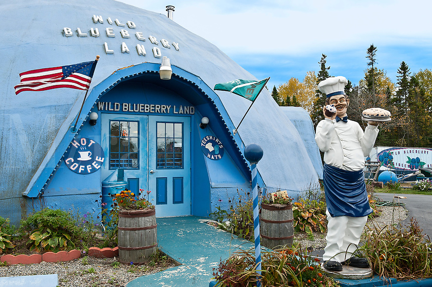 Wild Blueberry Land, Maine, ME, USA