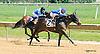 Sadie's Magic winning at Delaware Park on 6/11/16