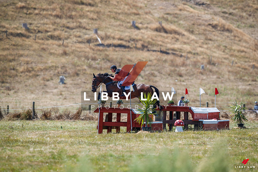 CCI2*-S. 2021 NZL-RANDLAB Matamata Horse Trial. Sunday 21 February. Copyright Photo: Libby Law Photography.