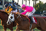 HALLANDALE BEACH, FL - JANUARY 28: #1 Taghleeb with Tyler Gaffalione up (pink silks) holds on for the victory in the WL McKnight Stakes (G3T) on Pegasus World Cup Day at Gulfstream Park. (Photo by Arron Haggart/Eclipse Sportswire/Getty Images