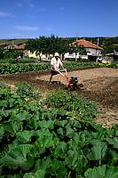 Gardening in yard near Sofia Bulgaria