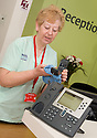::  SERCO :: FORTH VALLEY ROYAL HOSPITAL :: CLEANING :: TELEPHONE CLEANING ::