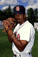 New Britain Red Sox 1993