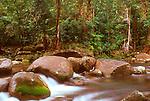 Wooroonooran National Park, Queensland