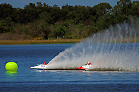 #78 and #77   (outboard hydroplane)
