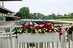 JUNE 03, 2020 : Opening day, minus spectators,  at Belmont Park, Elmont, NY.  Sue Kawczynski/Eclipse Sportswire/CSM
