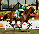 February 29, 2020: #5, CHEERMEISTER, wires the field in a repeat romp with Jockey Emisael Jaramillo over the Gulfstream Park Turf to take the Herecomesthebride Stakes at Gulfstream Park on February 29, 2020 in Hallandale Beach, FL. (Photo by Carson Dennis/Eclipse Sportswire/CSM)