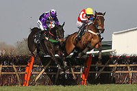 """Race winner Diamond Sweeper ridden by Wayne Hutchinson (R) jumps the last alongside Ballylifen ridden by Will Kennedy in the Call Star Sports On 08000 521321 """"National Hunt"""" Novices Hurdle - Horse Racing at Plumpton Racecourse, East Sussex - 12/03/12 - MANDATORY CREDIT: Gavin Ellis/TGSPHOTO - Self billing applies where appropriate - 0845 094 6026 - contact@tgsphoto.co.uk - NO UNPAID USE."""