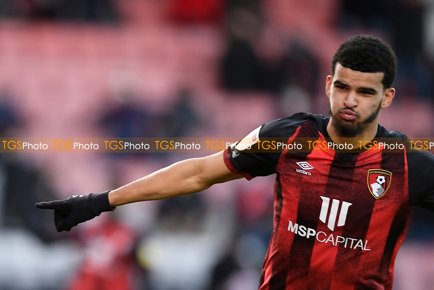 Dominic Solanke of AFC Bournemouth scores the first goal and celebrates during AFC Bournemouth vs Huddersfield Town, Sky Bet EFL Championship Football at the Vitality Stadium on 12th December 2020