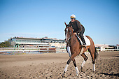 Steeplechase Times visits Mabou at Aqueduct - 9/18/11