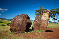 Large boulders near the Kukaniloko Birthstones in Wahiawa, O'ahu