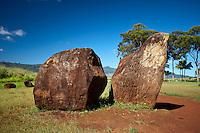 Large boulders near the Kukaniloko Birthstones in Wahiawa, O'ahu