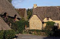 Europe/France/Pays de la Loire/44/Loire-Atlantique/Parc Naturel Régional de Brière/Grande Brière/Kerhinet: Détail des chaumières