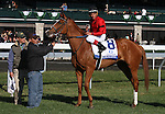 April 05, 2014:#8 Rosalind and jockey Joel Rosario and #2 Room Service and jockey, Shaun Bridgmohan win a Dead Heat in the  77th running of The Central Bank Ashland Grade 1 $500,000 at Keeneland Racetrack .  Rosalind is trained by Kenneth McPeek and owned by Landaluce Educe Stables and Room Service is trained by Wayne Catalano and owned by Gary and Mary West.  Candice Chavez/ESW/CSM