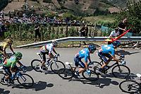 Team Movistar leading the peloton over the first climb of the day with World Champion Alejandro Valverde (ESP/Movistar)<br /> <br /> Stage 15: Tineo to Santuario del Acebo (154km)<br /> La Vuelta 2019<br /> <br /> ©kramon