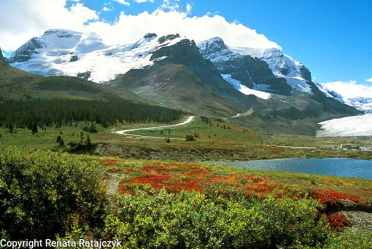 View on Columbia Icefield, Jasper National Park, Alberta, Canada