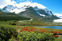 View on Columbia Icefield, Jasper National Park, Alberta, Canada