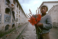 Children maintain graveyard in Bolivia - Child labor as seen around the world between 1979 and 1980 - Photographer Jean Pierre Laffont, touched by the suffering of child workers, chronicled their plight in 12 countries over the course of one year.  Laffont was awarded The World Press Award and Madeline Ross Award among many others for his work.
