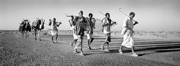 ©ÊHamish Wilson / Panos Pictures..Somaliland...