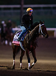 OCT 25: Breeders' Cup Juvenile Fillies Turf entrant Croughavouke, trained by Jeff Mullins,  at Santa Anita Park in Arcadia, California on Oct 25, 2019. Evers/Eclipse Sportswire/Breeders' Cup