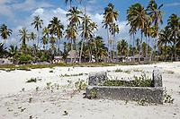 Jambiani, Zanzibar, Tanzania. Old Grave, Villages Houses in Background.