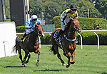 09 August 27: Spy in the Sky (no. 6), ridden by Liam McVicar and trained by James Day, wins the 68th running of the grade 1 New York Turf Writers Cup for four year olds and upward at Saratoga Race Track in Saratoga Springs, New York.