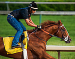 I'll Have Another, trained by Doug O'Neill and to be ridden by Michael Gutierrez, works out in preparation for the 138th Kentucky Derby at Churchill Downs in Louisville, Kentucky on May 3, 2012
