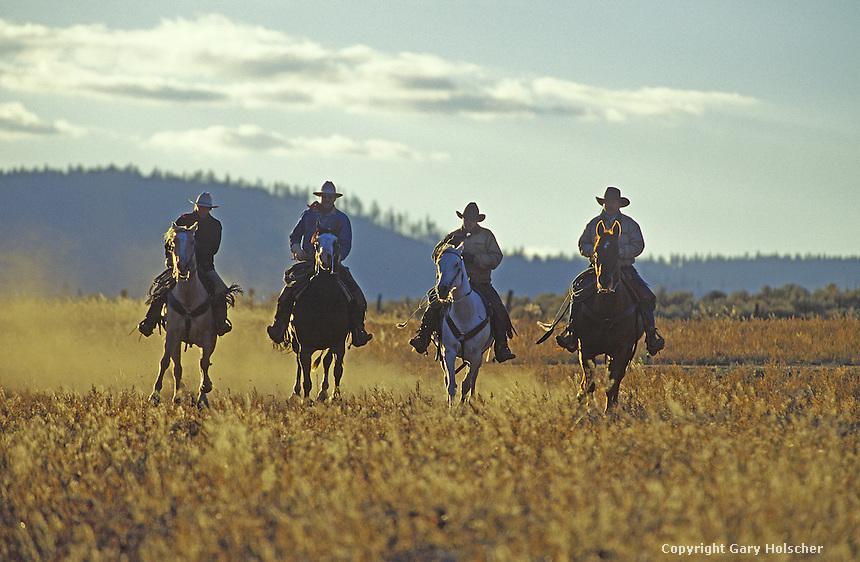 Cowboys on horses running in backlight. Ponderosa Ranch, Seneca, OR.