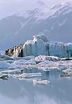 Alsek Glacier, St. Elias Mountains, Alaska