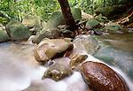 Bako National Park, Sarawak, Borneo, Malaysia