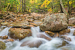 Fall foliage on Sabbaday Brook in the White Mountain National Forest, New Hampshire, USA