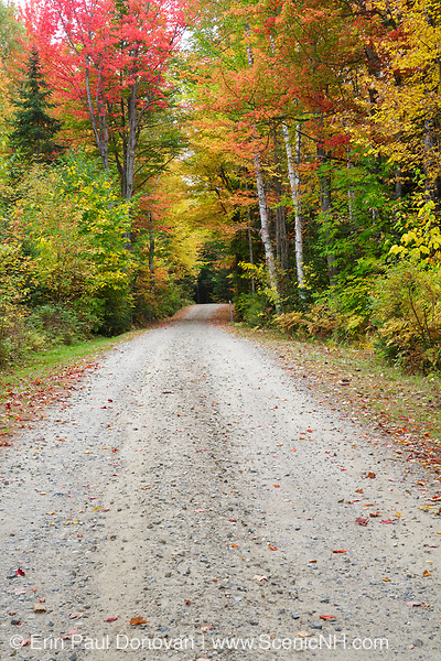 Dirt road leading into the campground at Milan Hill State Park in Milan, New Hampshire USA during the autumn months.
