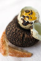 Europe/France/Midi-Pyrénées/46/Lot/ Cahors: Oeuf de Caille aux truffes et sa mouillette,  recette de Martine Bouchet