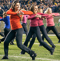 Pitt dance girls. The Pittsburgh Panthers defeat the Notre Dame Irish 27-22 at Heinz Field, Pittsburgh Pennsylvania on November 14, 2009..