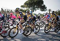 Wout van Aert (BEL/Jumbo-Visma) in the bunch<br /> <br /> Stage 1 from Lido di Camaiore to Lido di Camaiore (156km)<br /> <br /> 56th Tirreno-Adriatico 2021 (2.UWT) <br /> <br /> ©kramon