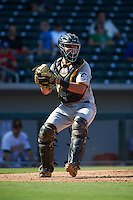 Glendale Desert Dogs catcher Reese McGuire (77) during an Arizona Fall League game against the Mesa Solar Sox on October 14, 2015 at Sloan Park in Mesa, Arizona.  Glendale defeated Mesa 7-6.  (Mike Janes/Four Seam Images)