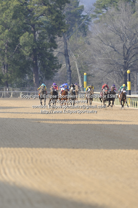 The horses coming down the back stretch where the objection occurred during the running of the Honeybee Stakes (Grade III) at Oaklawn Park in Hot Springs, Arkansas-USA on March 8, 2014. (Credit Image: © Justin Manning/Eclipse/ZUMAPRESS.com)