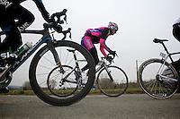 Gent-Wevelgem 2013.Filippo Pozzato (ITA) coming through.