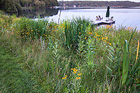 Lakeside dock, Connecticut meadow garden with native wildflowers; Larry Weaner Design